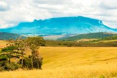 Roraima Tepui, Gran Sabana, Venezuela Fotografie Stock