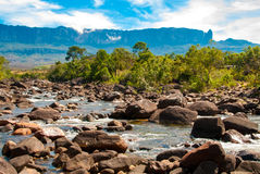 Roraima Tepui, Gran Sabana, Venezuela. Roraima table mountain with Kukenan river in front, Great Savanna, Canaima National Park, Venezuela Royalty Free Stock Images