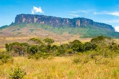 Roraima Tepui, Gran Sabana, Wenezuela Zdjęcia Stock