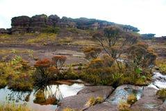 Roraima Tepui Summit, Gran Sabana, Venezuela. Limestones structures on the summit of Roraima Table Mountain, Great Savanna, Canaima National Park, Venezuela royalty free stock images