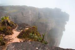 Roraima Tepui szczyt, Gran Sabana, Wenezuela Zdjęcie Stock
