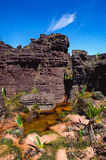 Roraima Tepui Top. Canaima, SE Venezuela royalty free stock photography