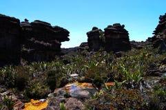 Roraima - Venezuela. Geology trek on Mount Roraima Stock Photos