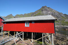 Rorbu cabin of west Lofoten  Lofoten Royalty Free Stock Photo