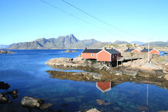 Rorbu cabins mirroring in  Mortsund Royalty Free Stock Photography