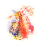Rorschach. Blue, red, orange and yellow watercolor. Royalty Free Stock Photography
