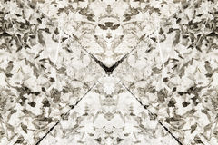 Rorschach Inkblot Zdjęcia Stock