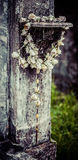 Rosário do cemitério de Nova Orleães Lafayette Imagem de Stock Royalty Free