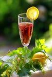 Rosé Wein Lizenzfreies Stockfoto