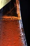Rosée sur la bouteille à bière Images libres de droits