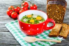 Rosół z warzywami, kurczaka mięsem i zieleniami w czerwonej polewce c, Zdjęcie Royalty Free