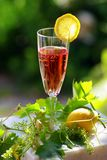 ros κρασί Στοκ φωτογραφία με δικαίωμα ελεύθερης χρήσης