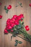 Ros av valentindagen Arkivfoto
