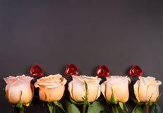 Ros för fem beiga med stearinljus i formen av hjärta på en mörk träbakgrund med kopieringsutrymme för din text Royaltyfria Foton