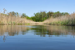 Ros river landscape Stock Images