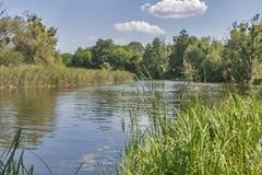 Ros river landscape Stock Photos