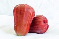 Rosa äpple Arkivbilder