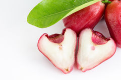 Rosa äpple eller Chomphu Royaltyfri Bild