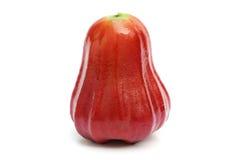 Rosa äpple på vit Arkivbild