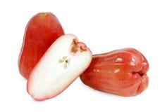 Rosa äpple som isoleras på vit royaltyfri foto
