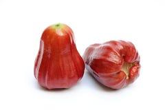 Rosa äpplen på vitbakgrund Arkivfoto