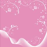 Rosa Imagem de Stock