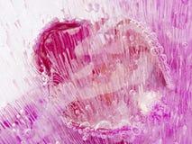 Rosa Abstraktion mit schönen Blasen der Luft Lizenzfreies Stockfoto