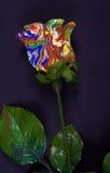 Rosa abstrata Fotos de Stock Royalty Free