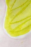 Rosa abstrato do verde da pintura Fotos de Stock Royalty Free