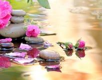 Rosa in acqua e pietre della stazione termale con le gocce fotografia stock libera da diritti