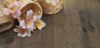 Rosa Alstromeria blommar blom- Straw Baskets på lantligt blom- bräde för träbakgrund kopiera avstånd Royaltyfria Foton