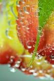 Rosa amarilla del rojo desarrollada en burbujas Imagen de archivo libre de regalías