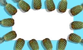 Rosa Ananas auf stilvollem blauem Hintergrund Lizenzfreies Stockbild