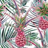 Rosa ananas, modell för vattenfärg för tropisk växt sömlös stock illustrationer