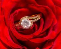 Rosa & anel imagens de stock
