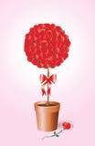 Rosa arbusto ilustração do vetor