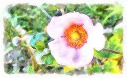 Rosa arbustos no jardim espanhol velho Pétalas de Rosa cor-de-rosa 01 Fotografia de Stock
