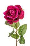 Rosa artificial do vermelho isolada Foto de Stock
