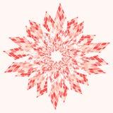 Rosa astratto della stella Immagini Stock