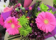 Rosa atrativo brilhante fresco doce Daisy Flowers Bouquet imagem de stock royalty free
