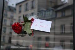 Rosa attraverso un foro di pallottola dopo il terrorista Attacks di Parigi del 13 novembre Fotografia Stock