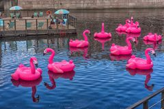 Rosa aufblasbare Flamingos in neuen Holland Park Stockbild