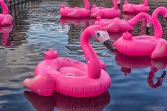 Rosa aufblasbare Flamingos in neuen Holland Park Lizenzfreies Stockbild