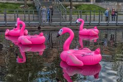 Rosa aufblasbare Flamingos in neuen Holland Park Stockbilder