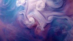 Rosa azul púrpura colorido vivo del fondo de la textura del movimiento del descenso de la pintura acrílica para el concepto abstr almacen de video