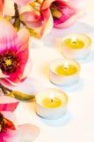Rosa Badekurortblumen-Hintergrundrahmen Stockbild