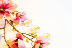 Rosa Badekurortblumen-Hintergrundrahmen Stockfoto