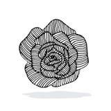 Rosa bakgrund Arkivfoton