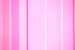 Rosa bakgrund Royaltyfri Fotografi
