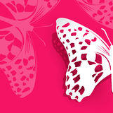 Rosa bakgrund för vektor med en pappers- fjäril Arkivfoto